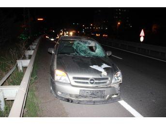 Yolun Karşısına Geçerken Otomobilin Çarptığı Şahıs Hayatını Kaybetti