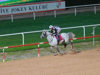 Seyhan Belediye Başkanlığı Koşusu Kupası 2. Kez