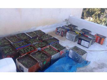 İskenderun'da Uyuşturucu Operasyonları
