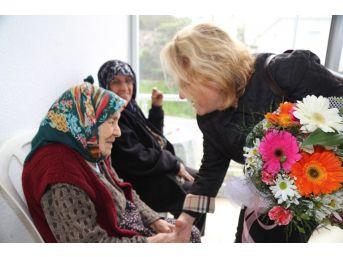 Bodrum'u Bodrum Yapan Çınarlar Unutulmadı