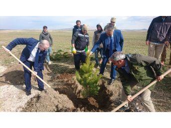 Başkan Özgökçe'den 'dünya Ormancılık Günü' Mesajı