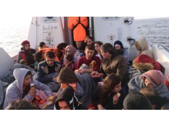 Didim'de 38 Suriyeli Göçmen Yakalandı