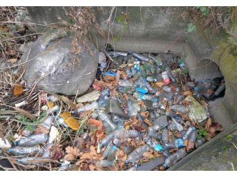 Sapanca Gölü'nden 300 Torba Çöp Çıktı
