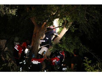 Şarampole Devrilen Otomobil Ağaçta Asılı Kaldı: 4 Yaralı