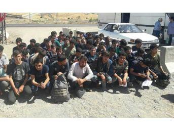 Bingöl'de 59 Kaçak Göçmen Yakalandı