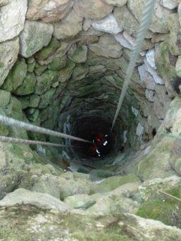 15 Metrelik Kuyuya Düşen İneği Afad Ekipleri Kurtardı