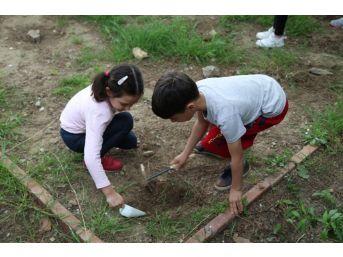 Antandros'un Küçük Arkeologları İş Başında