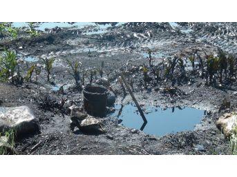 Petrol Çalarken Boru Hattını Patlattılar