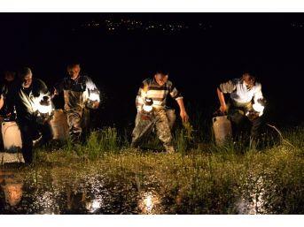 Kurbağa Avcıları Turizm Sezonuna Hazır... 5 Ayda 26 Bin 300 Kilo Kurbağa Yakalandı