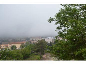 Mardin'de Yağmur Ve Sis Hayatını Olumsuz Etkiledi