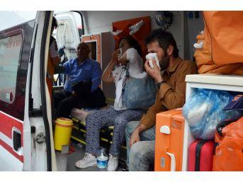 Milas'ta Yolcu Otobüsü Çöp Kamyonuna Çarptı: 9 Yaralı