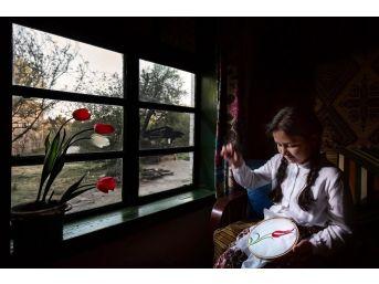 """""""en Güzel Lale"""" Fotoğraf Yarışmasının Kazananları Belli Oldu"""