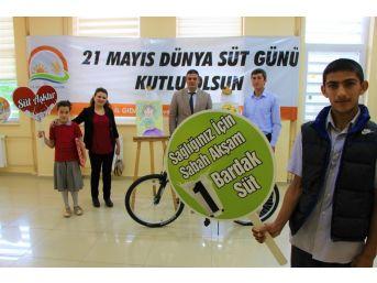 Süt Üretiminde Dünyada İlk 10'da Olan Türkiye Tüketiminde Ab Ülkelerinin Gerisinde