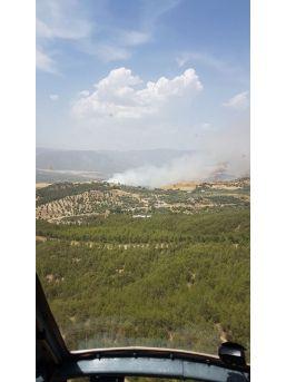 Bozdoğan'da Orman Yangını