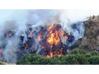 Ayvalık'ta Çöplük Yangını Ormanlık Alana Sıçramadan Güçlükle Kontrol Altına Alındı
