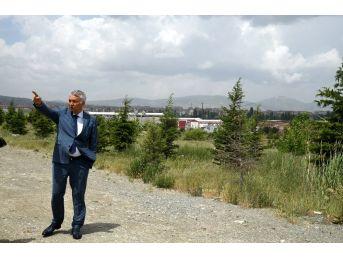 Isparta'da Çöp Depolama Alanı Çevresi Ormana Dönüştü