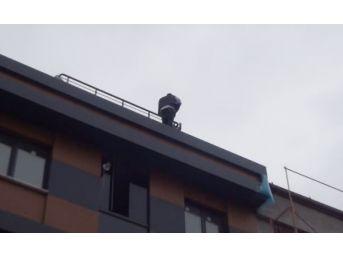 (özel) 15'inci Kez İntihara Kalkışan Simitçiye Vatandaşlardan Tepki