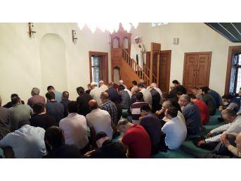 Restorasyonu Tamamlanan Mimar Sinan'ın Eseri Davutağa Camii Yeniden İbadete Açıldı