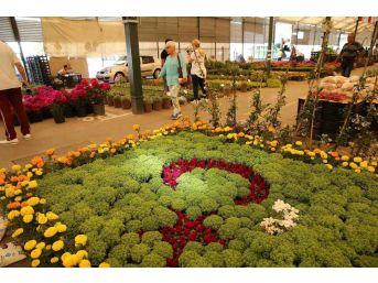 Karşıyaka Çiçek Festivali'ne 40 Bin Ziyaretçi