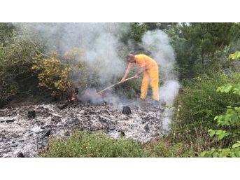 Tokat'ta Yıldırım Düşen Ormanda Yangın Çıktı