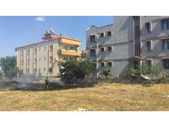 Milas'ta Otluk Alanda Yangın
