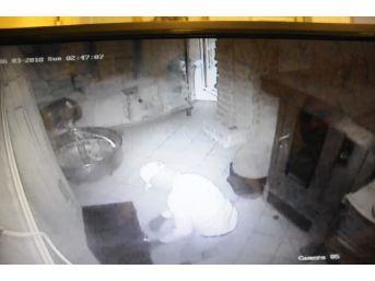 Çelik Kasa Hırsızları Güvenlik Kamerasında