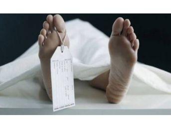 Muğla'da 2017 Yılında 5 Bin 585 Kişi Öldü