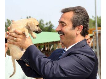 Başkan Çetin: