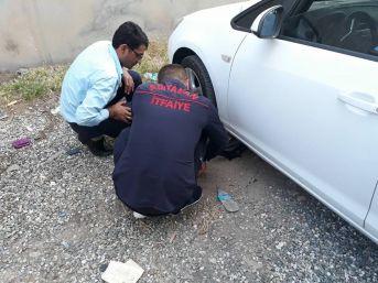 Araç Altına Sıkışan Köpek Kurtarıldı