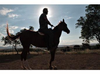 Müdürlüğü Bıraktı, At Çiftliği Açtı