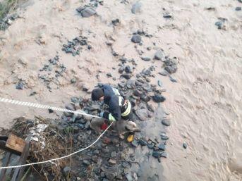 Sel Sularının Ortasında Kalan Köpeği Kurtarmak İçin Seferber Oldular
