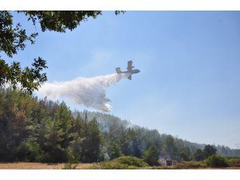 Manavgat'taki Orman Yangınları Kontrol Altına Alındı