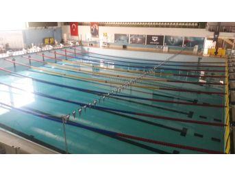 (özel) Güngören'de Yüzme Şampiyonası'nda