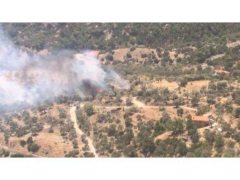 Datça'da Ziraat Yangını