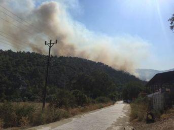 Muğla'da Orman Yangını Kontrol Altına Alındı