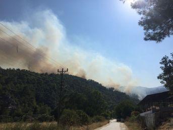 Muğla'da Orman Yangını Yerleşim Alanlarını Tehdit Ediyor