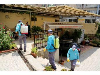 Adana Büyükşehir Belediyesi Bebekli Kilise'yi İlaçladı