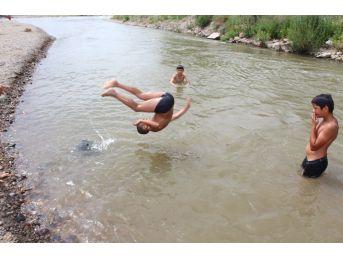 Tehlikeye Aldırış Etmeden Nehirde Yüzüyorlar