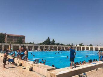 Batman'ın En Temiz Havuzu 'olimpik'