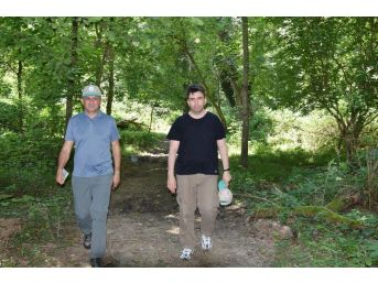 İğneada Longoz Ormanları Milli Parkı İncelendi