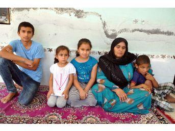 Şanlıurfalı Şoförün 15 Gündür Irak'ta Gözaltında Tutulduğu İddiası