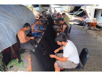 (özel) Balıkçılardan Müjde, Denizde Bu Yıl Balık Çok