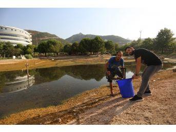 Paü'de Balıklar Korumaya Alındı