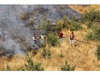 Hizan'da Orman Yangını
