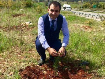 Başkan Ateş, Yaz Aylarında Meydana Gelen Orman Yangınlarına Karşı Uyardı