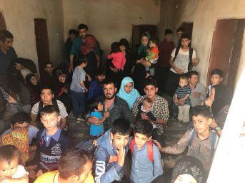 Van'da 299 Yabancı Uyruklu Kaçak Şahıs Yakalandı